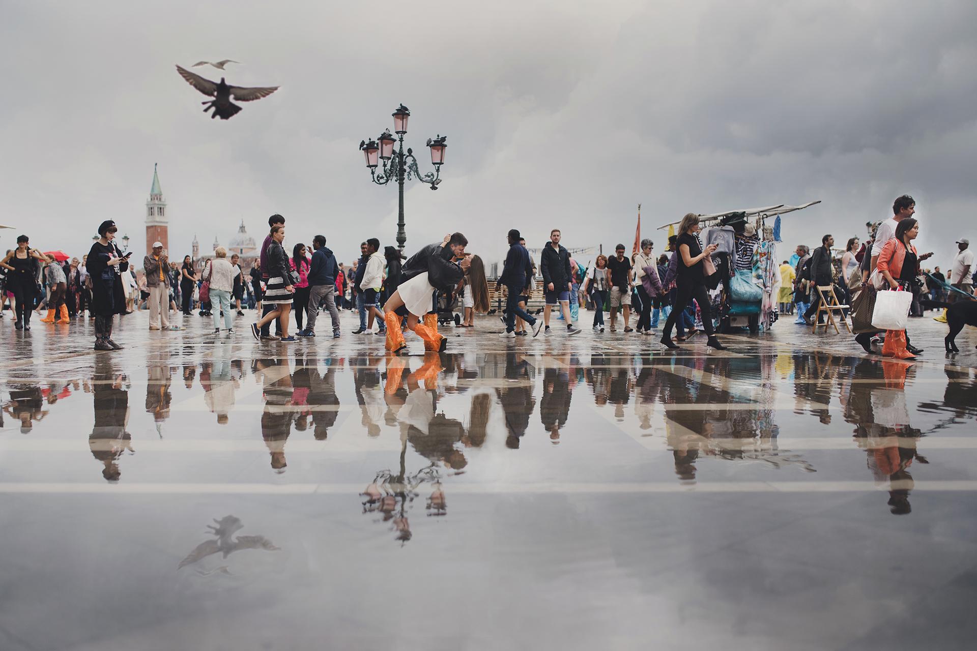 Venezia riflesso piccione